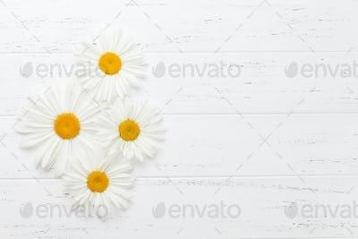 Garden chamomile flowers on wooden background