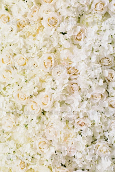 roses, hydrangea, peonies flower as background