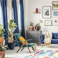 Orange pillow on green armchair near blue couch in colorful livi