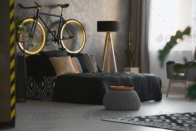 Modern bedroom interior with decorative cushions on black bed, a