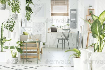 White home office interior with fresh green plants, grey chair s