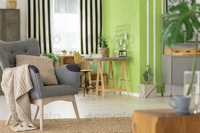 Beige pillow and blanket on grey armchair in green apartment int