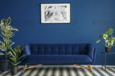 Luxurious dark blue plush couch surrounded by green plants stand