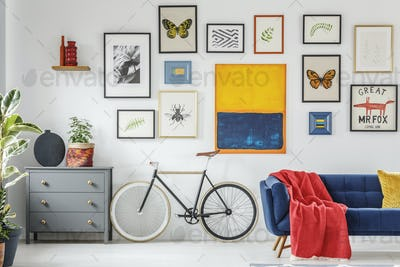 Red blanket on blue sofa next to bike in modern living room inte