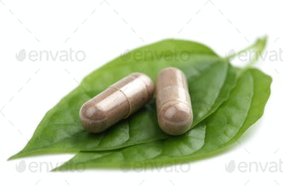 macro of prescription pills over green leaf isolated