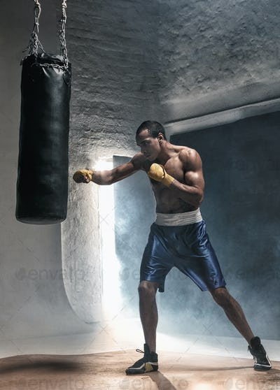 Boxing training and punching bag
