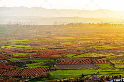 Beutiful sunset over colored agricultiral fields