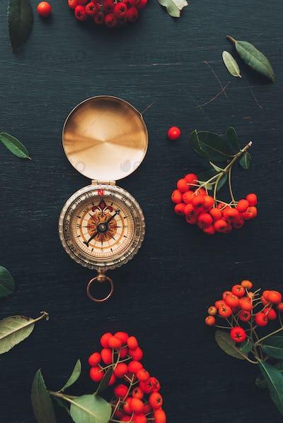 Vintage navigational compass flat lay