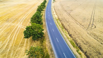 Aerial view of a country road between agricultural fields