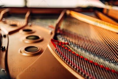 Inside grand piano, strings closeup, nobody