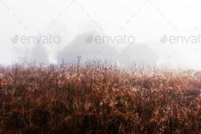 Alone house on foggy meadow