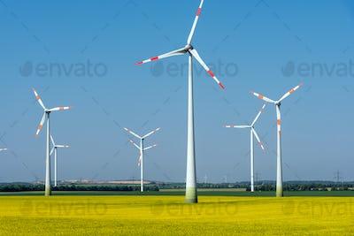 Modern wind wheels in a field of blooming rapeseed oil