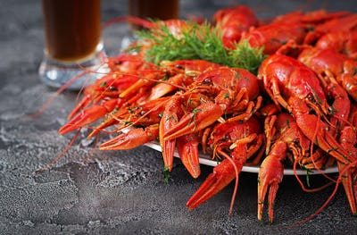 Crayfish. Red boiled crawfishes on table in rustic style, closeu