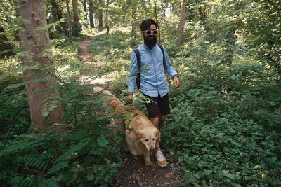 Handsome man walking his dog in outdoors