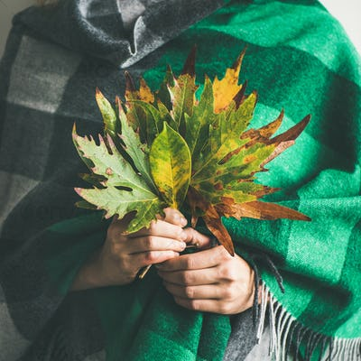 Woman in scarf or blanket with Autumn leaves, square crop