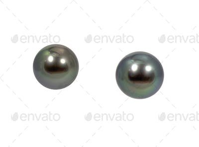 Black Green South Sea Pearl Earrings Pair