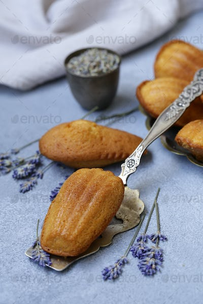 French Cookies Madeleine