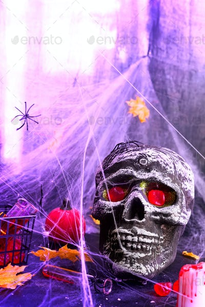 Still life with human skull and autumn leaves, spider on black violet Panton halogen background