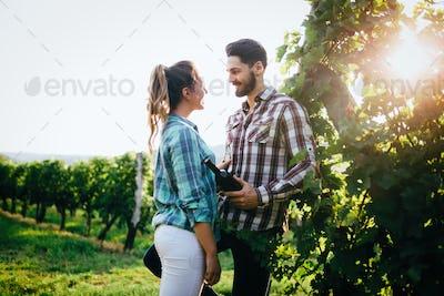 Couple in vineyard before harvesting