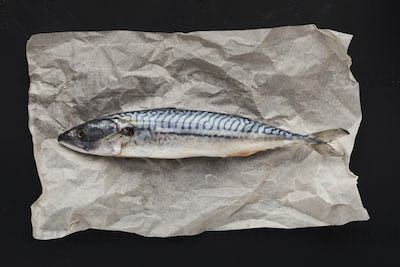 Raw fish on parchment, top view