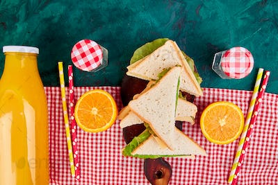Picnic. Red checked tablecloth, basket, healthy food