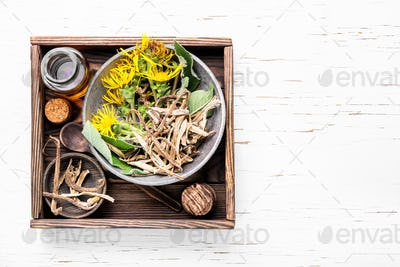 Root and tincture of elecampane