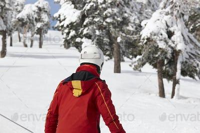 Skier on snowy forest slope. White mountain landscape. Winter sport