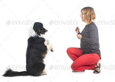 australian shepherd and woman