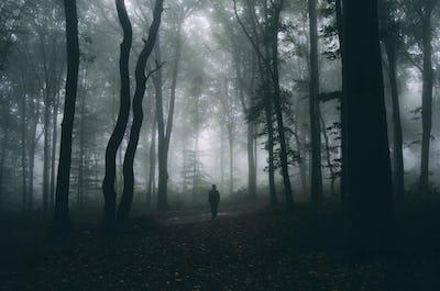 Man in mysterious dark Transylvanian woods