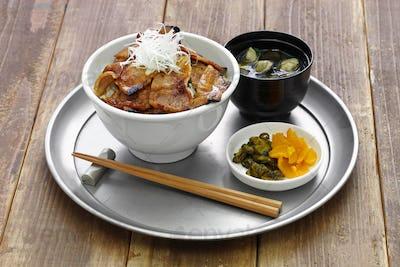 teriyaki pork rice bowl, butadon, japanese food