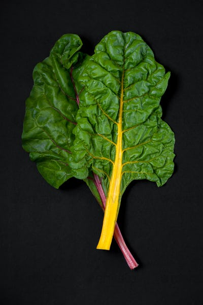 Two leaves of Mangold (salad chard) close-up on a black backgrou