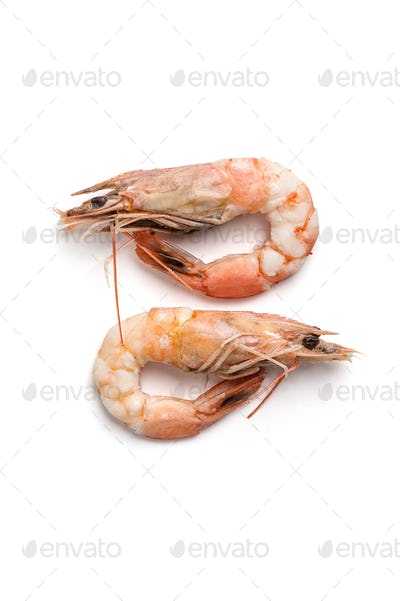 Two boiled shrimps close-up. Isolated on white background.