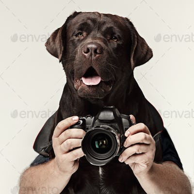 Dog photographer taking pictures. isolated on white background.