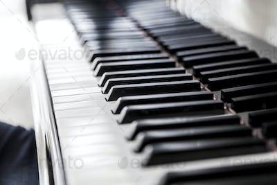 White Keys Of Music