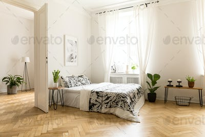 Plant on table next to bed in white open space interior with win