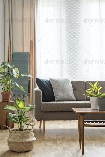 Real photo of a couch with pillows standing behind a table with