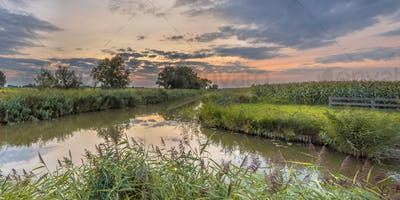 Canals in agricultural landscape