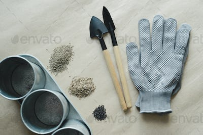 empty metal pot, gardening tools, gloves and seeds heaps