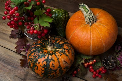 Thanksgiving rustic decor with viburnum and pumpkins