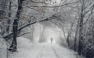 fantasy woods in winter, man walking on snowy forest road