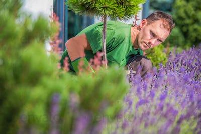 Young Gardener in the Garden