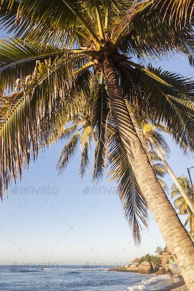 El Tunco Beach in Salvador