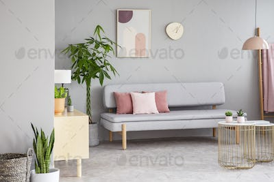 Real photo of grey living room interior with lounge with pink cu