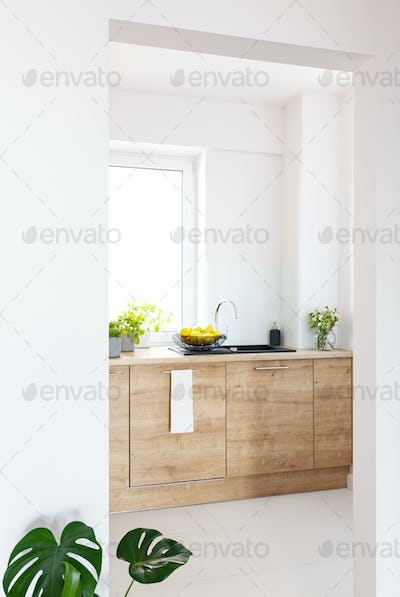 Plants on wooden cabinet in white simple kitchen interior with w