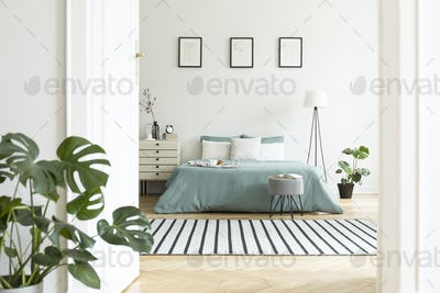Posters above green bed in white bedroom interior with plants an