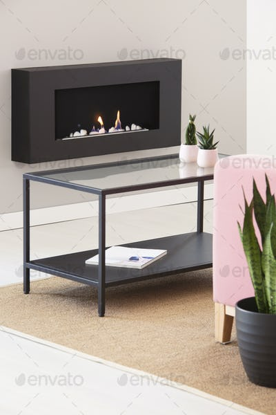 Metal and glass coffee table with small cactuses in pastel pink