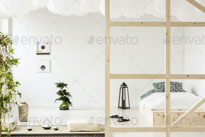 Posters on white wall above bonsai in bedroom interior with lant