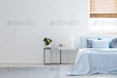 Plant and lamp on table next to blue bed in bedroom interior wit