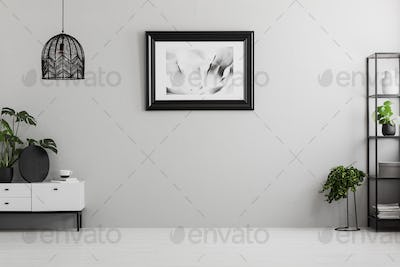 Poster on grey wall in empty living room interior with plants, l