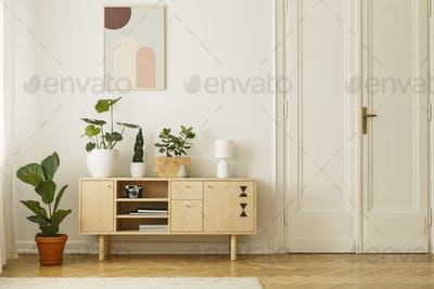 Retro style, wooden sideboard with green plants and a poster on